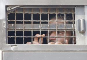 """الأسرى يعلقون خطواتهم الاحتجاجية المتعلقة بقضية """"الكانتينا"""" لمدة أسبوع"""